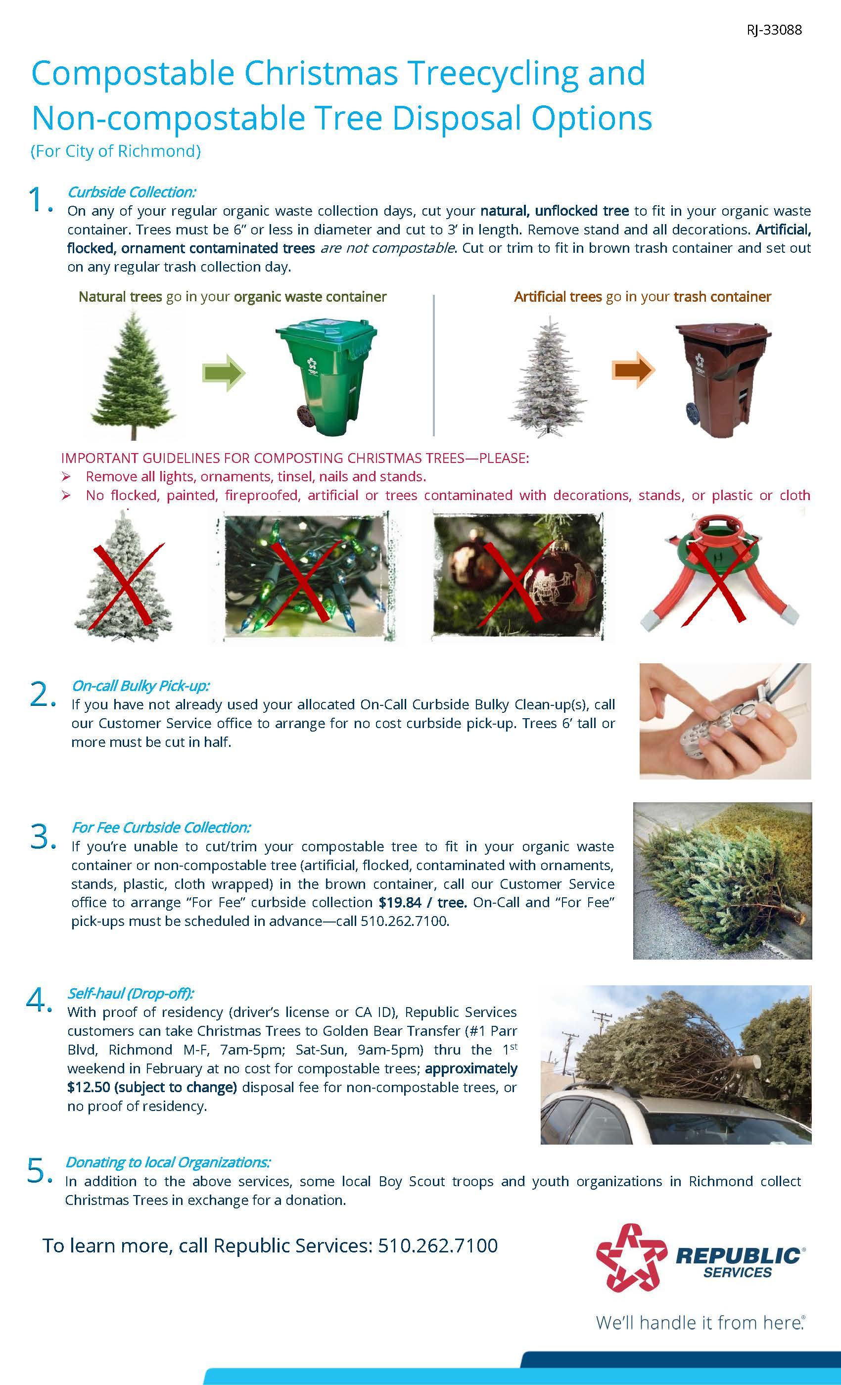 Richmond 2020 Christmas Tree flyer English