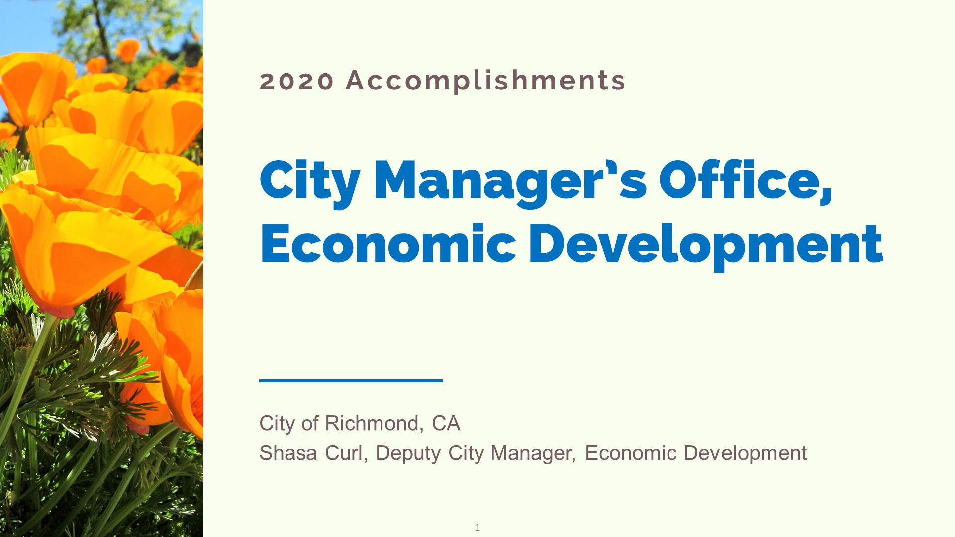 CMO-ED 2020 Accomplishments